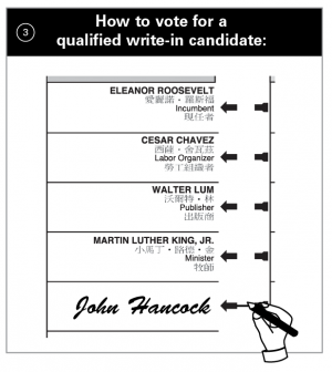 how to vote for a qualified write-in candidate